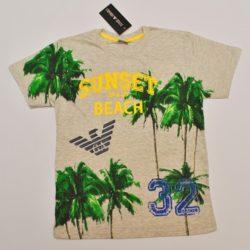 Стильная модная  футболка Armani для мальчиков 10-15  лет. Турция, хлопок